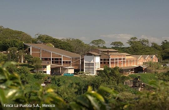 Finca La Puebla Mexico